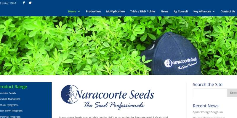 Naracoorte Seeds_gusto-marketing